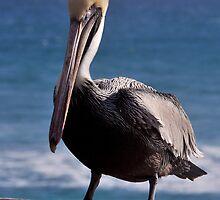 "Life is a ""Beach"" by Dennis Stewart"