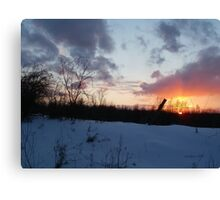 Sunset under the barbed fence Canvas Print