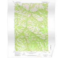 USGS Topo Map Oregon Bingham Springs 279044 1963 24000 Poster