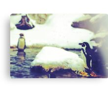 Pinguin Day 1 - Lonesome Canvas Print