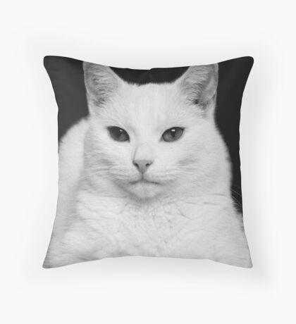 Feline Study Throw Pillow