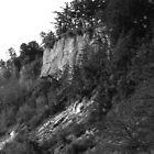 Fort Worden Hillside by arawak