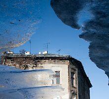 sunken in puddle I by Jacek Nazim