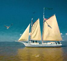 Sail Away by Chris Armytage™