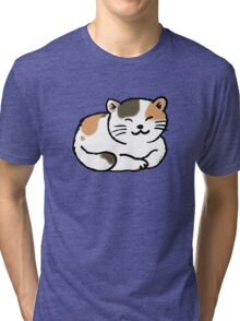 Sleepy calico kitty cat Tri-blend T-Shirt