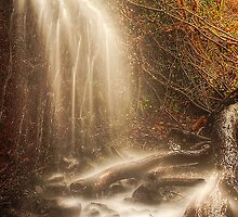 Misty Falls by Don Alexander Lumsden (Echo7)
