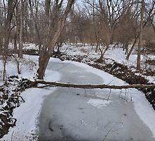 Not-so-winding winter creek by mltrue