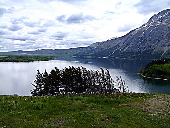 MIddle Waterton Lake by George Cousins