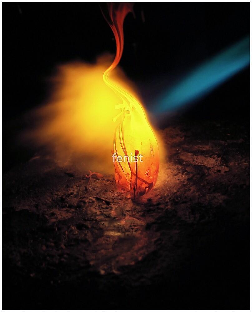 Fire Flower by fenist