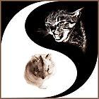 Yin Yang by fenist