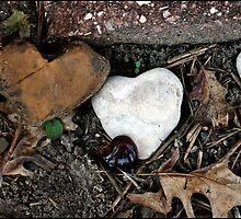 Garden of Hearts by luckylarue
