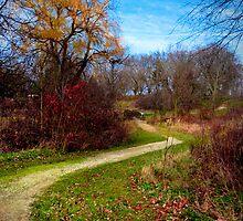 Autumn Road by Michi Fana