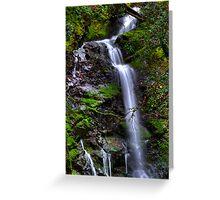 Uvas Canyon, CA Greeting Card