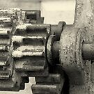gears under the rain by fabio piretti