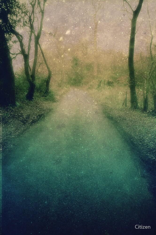 Mellow Lane by Nikki Smith