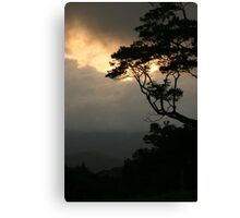 Sunset at Mary Cairncross Park Canvas Print