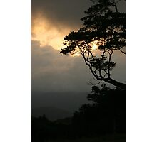 Sunset at Mary Cairncross Park Photographic Print