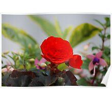 Vermilion floral utopia  Poster