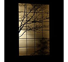 Perfect Silhouette  Photographic Print