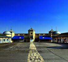 Hastings Pier  by larry flewers