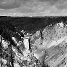 Lower Yellowstone Falls in Black and White by Bob Moore