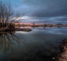 Gloom with a Hint of Color by Bob Larson