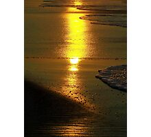 gilded reflections Photographic Print