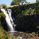 Lal Lal Falls by Arthur Koole
