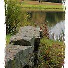 Rock Fence by teresa731