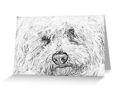 Shaggy Becky the Bichon Greeting Card