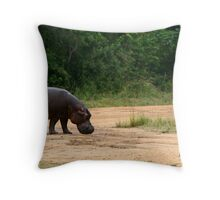 """""""Never Look Behind You...But?!"""" Throw Pillow"""
