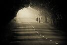 A long way to go by Dinni H