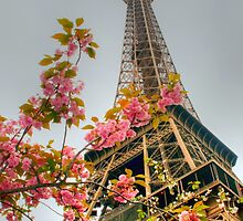 Springtime Eiffel in HDR by Michael Matthews