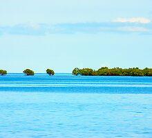 island & mangroves, FIJI by chelka09