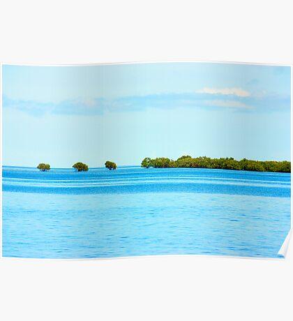 island & mangroves, FIJI Poster