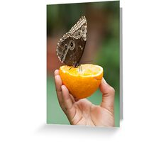 butterfly on hand Greeting Card