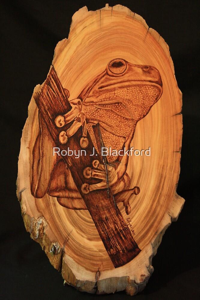 Green Tree Frog  by aussiebushstick