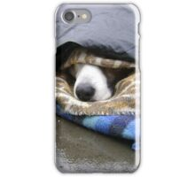 Dumper (street seller's dog) iPhone Case/Skin