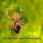 German Spider Love. by StrangEnQuirkY