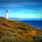 Point Lonsdale Lighthouse - Port Phillip Heads Marine National Park by John Bullen