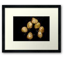 Potato Henge Framed Print