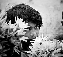 Buy My Lillies by induruwana