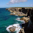 La Grande Falaise   Guadeloupe by 29Breizh33
