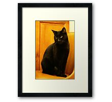 My Pet Panther Framed Print
