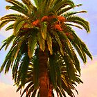 The Palms by HEIDI  HORVATH