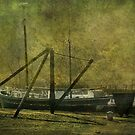 Morwelham Tall Ship by Catherine Hamilton-Veal  ©