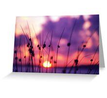 Doon sunset Greeting Card