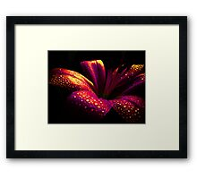 Lily Crystal. Framed Print