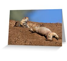 Kung Fu Prairie Dogs 3 (The Knockout) Greeting Card