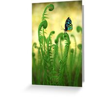 Schmetterling Greeting Card
